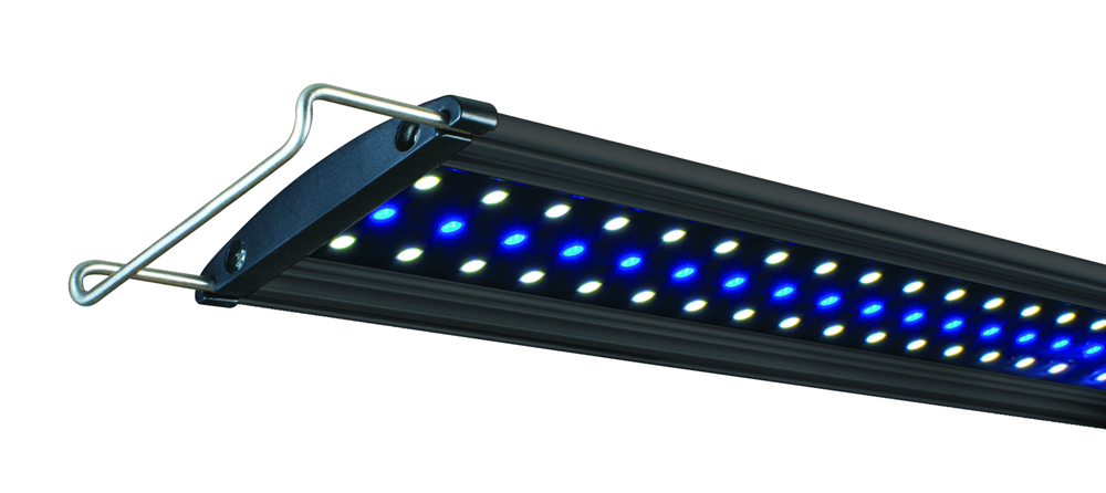 MARINE LED   Lifegard® High Output Ultra-Slim Blue/White LED Light