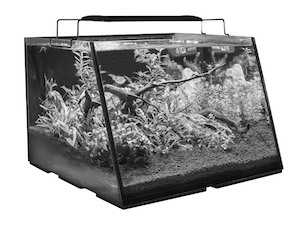 Full View Aquarium BW